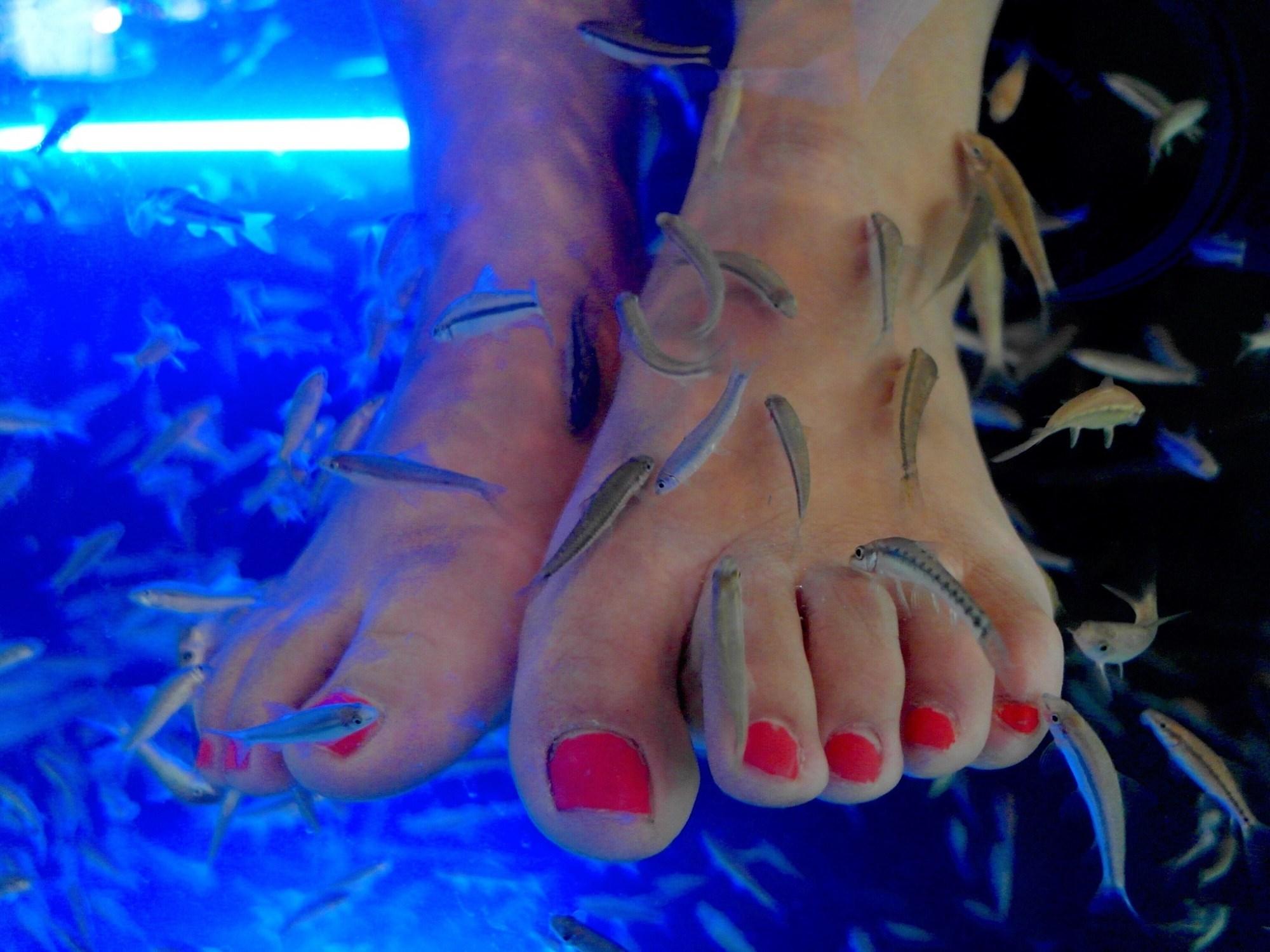 Fish Pedicure Causes Woman to Lose Toenails